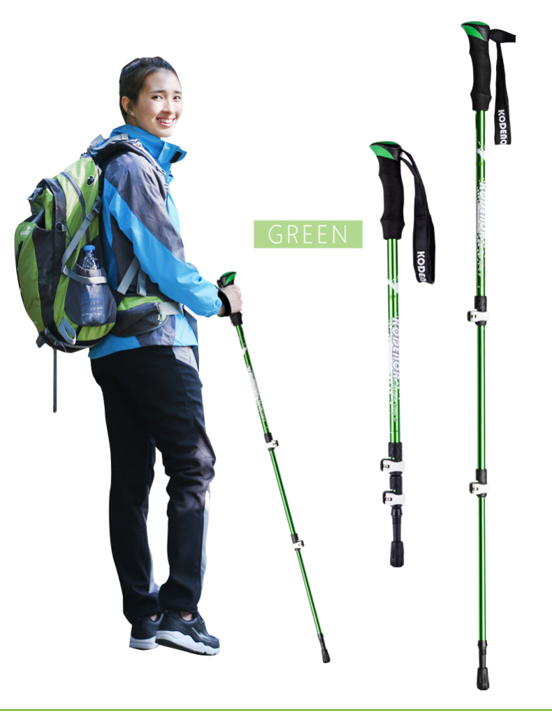 3 Sections Alpenstock DFTZL-9 (10).jpg