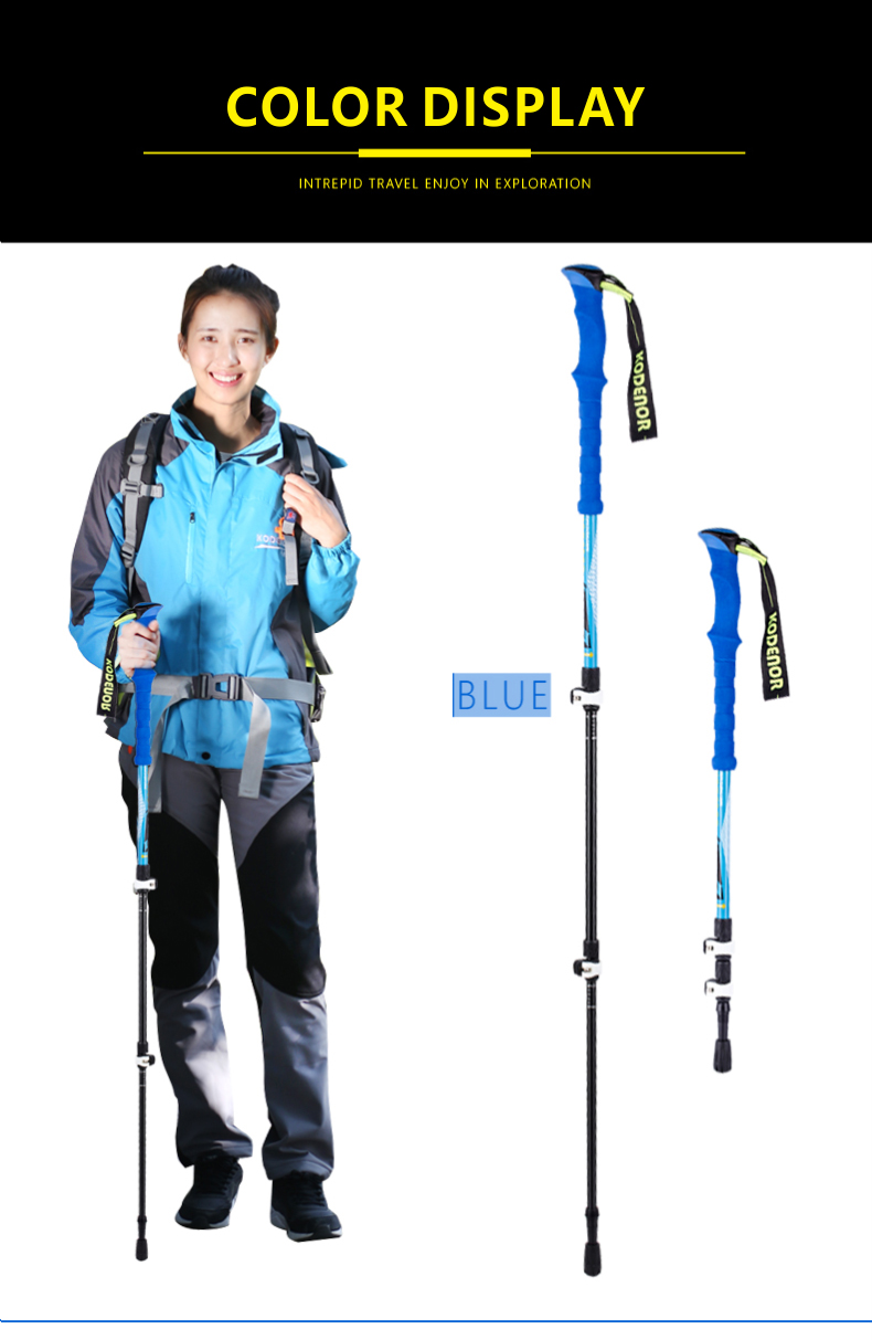 3 Sections Alpenstock DFTZL-7 (8).jpg