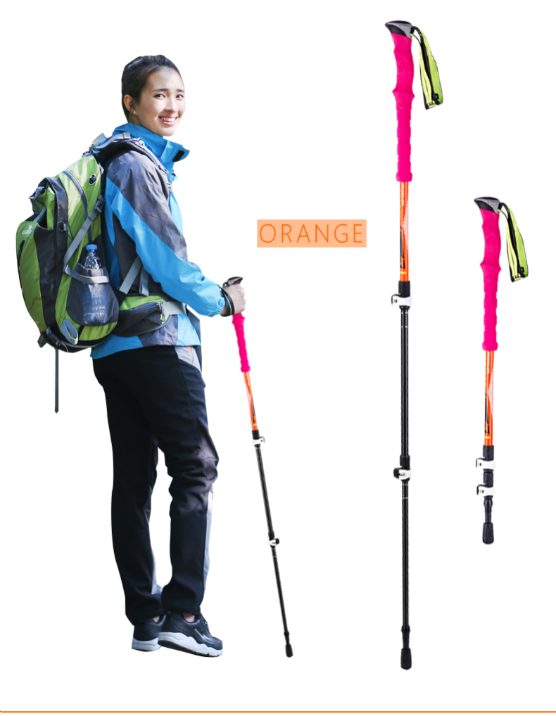 3 Sections Alpenstock DFTZL-7 (10).jpg